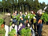 子どもたちと畑(2)
